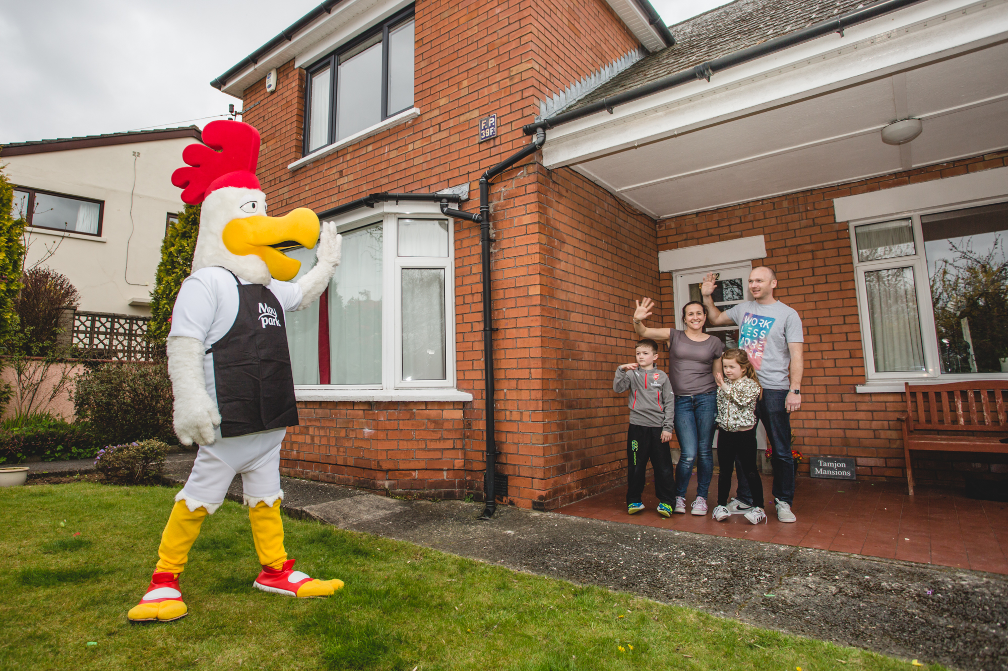 Belfast family to 'Rule the Roost'