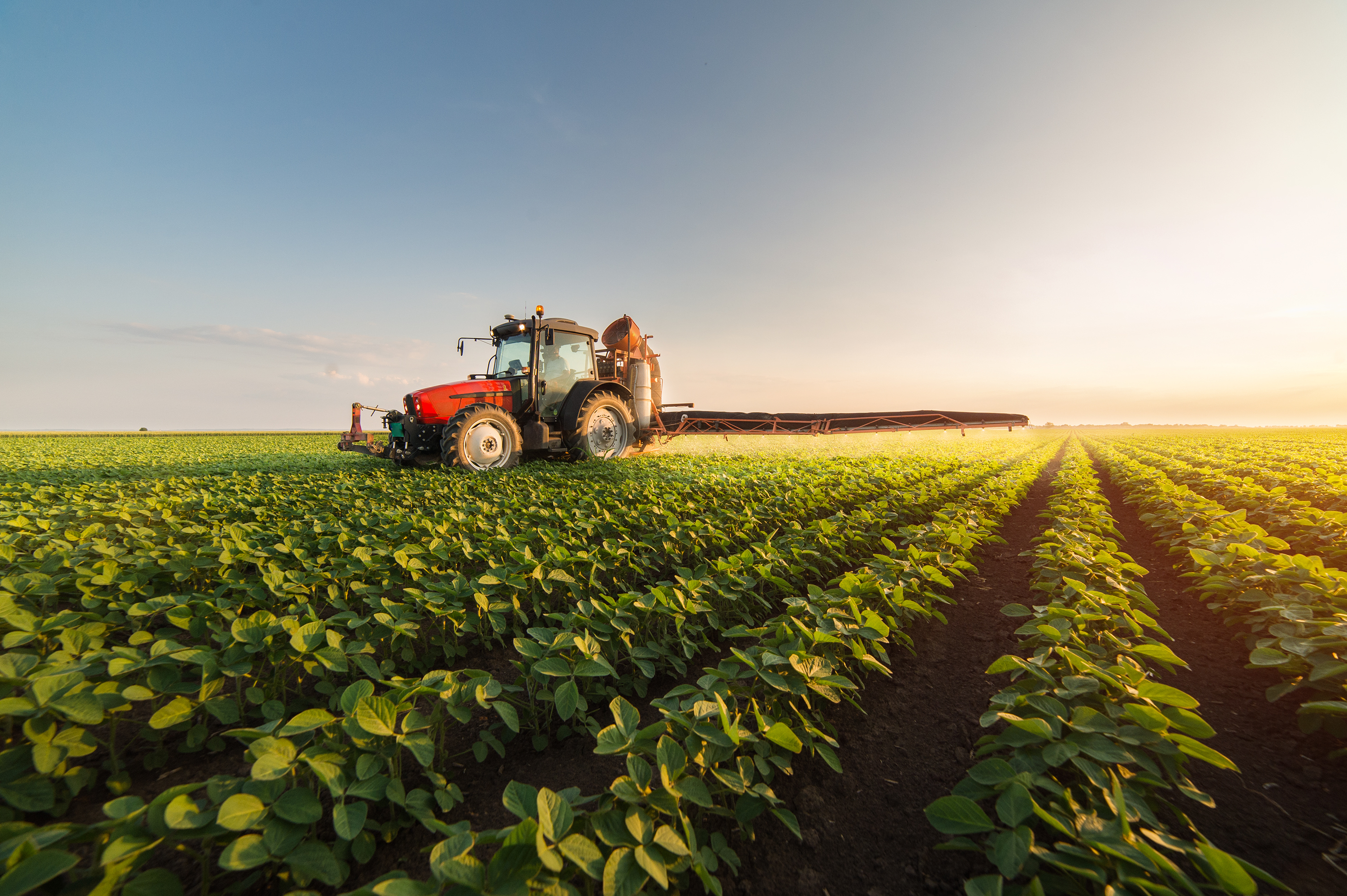 Ulster farming businesses play vital role in tackling climate change