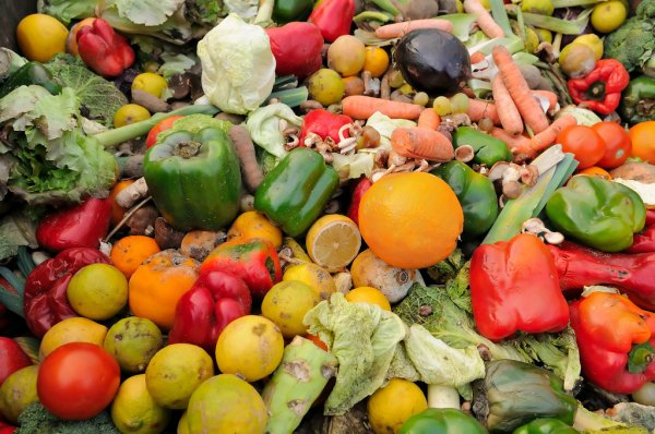 Call for Crackdown on Food Waste – Food Waste Action Week