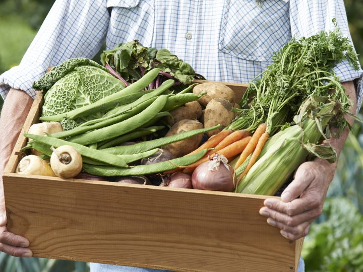 Community Fridge a first to tackle food waste