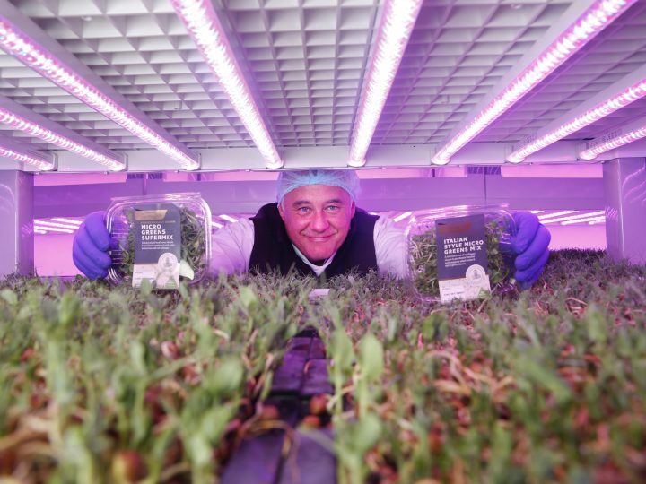 SuperValu's vegetables reach new heights with launch of Ireland's first hydroponically grown microgreen mixes